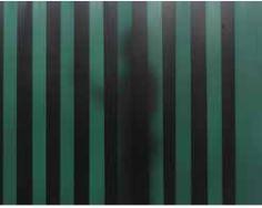 Doorzichtigheid Groen 9 lamellen